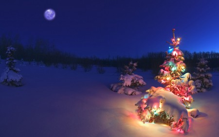 Feliz Navidad y próspero año nuevo 2016 (imagen obtenida por cortesía de bancodeimagenesgratis.com)