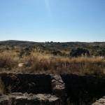 23/07/2015: Estado actual de abandono del Fuerte Nuevo de Torregamones (foto 06)
