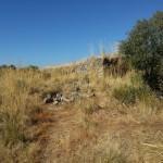 23/07/2015: Estado actual de abandono del Fuerte Nuevo de Torregamones (foto 07)