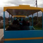 Torregamones: Fiestas Virgen del Templo – 17 Octubre 2015 (Foto 06): Tren turístico