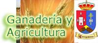 Noticia: Ganadería y Agricultura